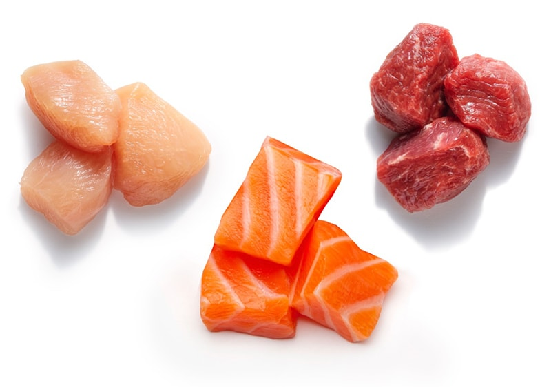 raw pieces of chicken, salmon, and lamb