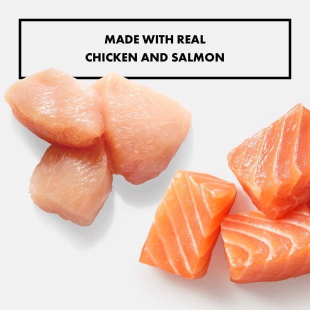 "small chunks of chicken and salmon with text that said ""made with real chicken and salmon"""