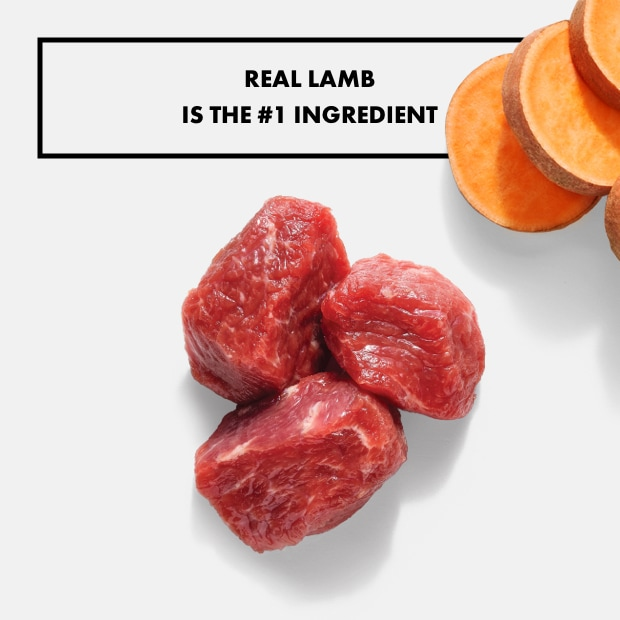 "small chunks of raw lamb with text that said ""real lamb is the #1 ingredient"" with sweet potatoes"