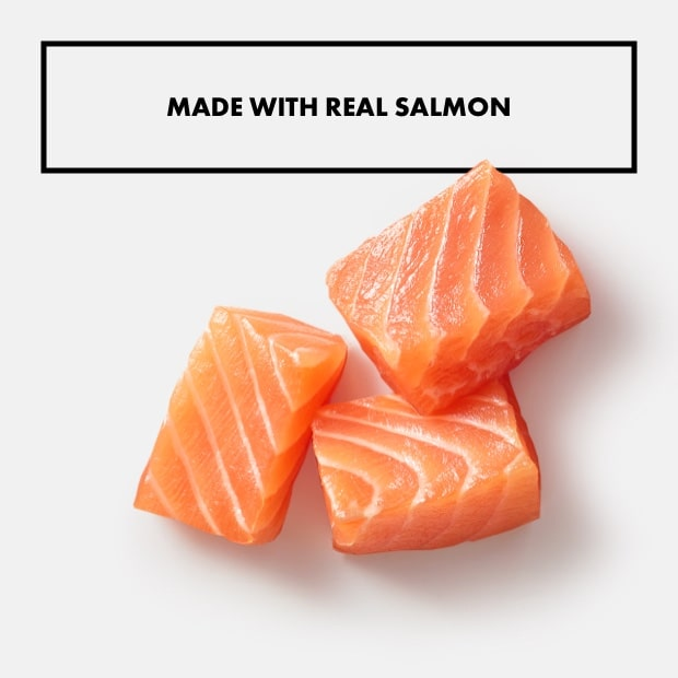 "small chunks of salmon with text that said ""made with real salmon"""