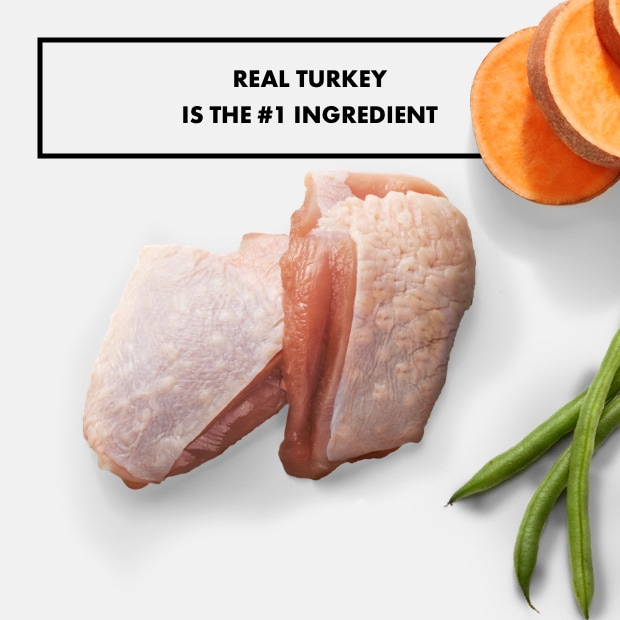 "Raw turkey with sweet potatoes and beans text that reads ""real turkey is the #1 ingredient"""
